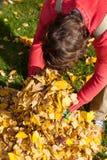 Καθαρίζοντας κήπος ατόμων από τα φύλλα Στοκ εικόνες με δικαίωμα ελεύθερης χρήσης