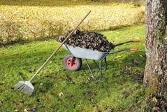 καθαρίζοντας κήπος s φθιν&o Στοκ Φωτογραφία