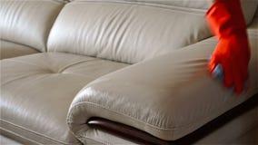 Καθαρίζοντας καναπές δέρματος ατόμων φιλμ μικρού μήκους