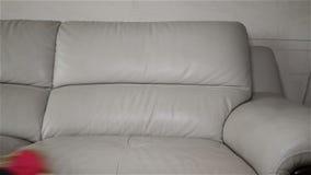 Καθαρίζοντας καναπές δέρματος ατόμων στο σπίτι απόθεμα βίντεο