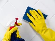 καθαρίζοντας κεραμίδι Στοκ Φωτογραφία