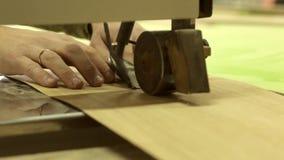Καθαρίζοντας ξύλο απόθεμα βίντεο