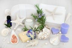 Καθαρίζοντας προϊόντα χορταριών της Rosemary Στοκ φωτογραφίες με δικαίωμα ελεύθερης χρήσης