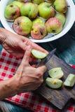 Καθαρίζοντας σάπια μήλα Στοκ εικόνα με δικαίωμα ελεύθερης χρήσης
