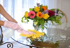 Καθαρίζοντας σπίτι, ψεκασμός και πετσέτα κοντά στα λουλούδια στον πίνακα Στοκ Φωτογραφίες
