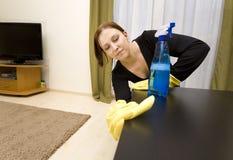 καθαρίζοντας σπίτι Στοκ εικόνες με δικαίωμα ελεύθερης χρήσης