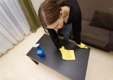 καθαρίζοντας σπίτι Στοκ Εικόνες