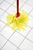 Καθαρίζοντας τη σφουγγαρίστρα, κλείστε επάνω στοκ φωτογραφία με δικαίωμα ελεύθερης χρήσης