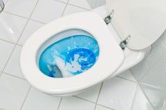 καθαρίζοντας τουαλέτα Στοκ εικόνα με δικαίωμα ελεύθερης χρήσης