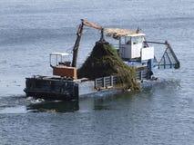 καθαρίζοντας ύδωρ επιφάνειας σκαφών Στοκ Φωτογραφίες