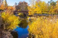 Καθαρίστε την ημέρα πτώσης στον τοπικό ποταμό στοκ εικόνα