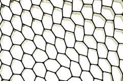 καθαρισμένη μέλισσα κηρήθρα Στοκ φωτογραφία με δικαίωμα ελεύθερης χρήσης