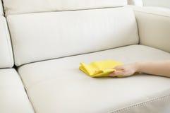 Καθαρισμός ενός μπεζ καναπέ Στοκ Εικόνες