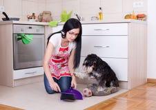 Καθαρισμός μετά από το σκυλί στην κουζίνα στοκ εικόνες με δικαίωμα ελεύθερης χρήσης