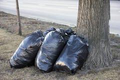 Καθαρισμός οδών άνοιξη - μαύρες τσάντες garbarge με το ξηρό nea φύλλων Στοκ φωτογραφίες με δικαίωμα ελεύθερης χρήσης