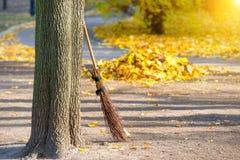 Καθαρισμός στο πάρκο φθινοπώρου Στοκ Εικόνες
