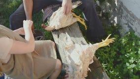 Καθαρισμός των κοτόπουλων από το φτερό απόθεμα βίντεο