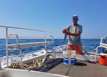 Καθαρισμός των ψαριών του στοκ εικόνες