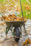 Καθαρισμός φθινοπώρου στον κήπο Στοκ φωτογραφίες με δικαίωμα ελεύθερης χρήσης