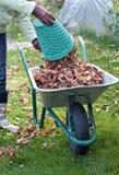 Καθαρισμός φθινοπώρου Στοκ φωτογραφίες με δικαίωμα ελεύθερης χρήσης