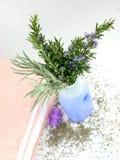 καθαριστικό lavender μπουκαλιώ Στοκ φωτογραφία με δικαίωμα ελεύθερης χρήσης