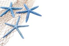 καθαρός αστερίας συνόρων Στοκ εικόνα με δικαίωμα ελεύθερης χρήσης
