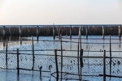 Καθαρός και κυματοθραύστης μπαμπού στη θάλασσα στοκ φωτογραφία με δικαίωμα ελεύθερης χρήσης