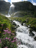Καθαρός καταρράκτης κολπίσκου στα βουνά Στοκ Εικόνες