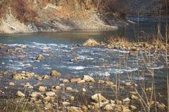 Καθαρός ποταμός βουνών με τα ορμητικά σημεία ποταμού στα Καρπάθια βουνά Χειμερινός ηλιόλουστος μπλε ποταμός Στοκ Φωτογραφίες