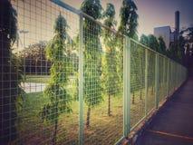 Καθαρός φράκτης χάλυβα μπροστά από τον τομέα καλαθοσφαίρισης στο χρόνο βραδιού Στοκ Φωτογραφία