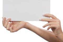 καθαρό θηλυκό φύλλο εγγ&r Στοκ εικόνες με δικαίωμα ελεύθερης χρήσης