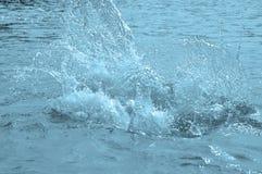 Καθαρό νερό ψεκασμού Στοκ φωτογραφία με δικαίωμα ελεύθερης χρήσης
