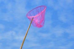 καθαρό ροζ πεταλούδων Στοκ Εικόνες