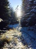Καθαρό φως Στοκ Φωτογραφίες