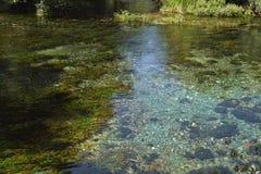 καθαρό ύδωρ στοκ εικόνες
