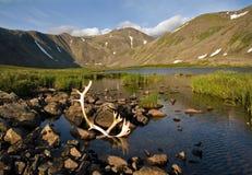καθαρό ύδωρ Στοκ εικόνα με δικαίωμα ελεύθερης χρήσης