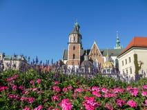 καθεδρικός ναός Κρακοβί&a Στοκ Φωτογραφία
