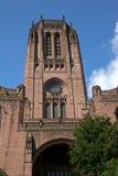 καθεδρικός ναός Λίβερπο& Στοκ φωτογραφία με δικαίωμα ελεύθερης χρήσης