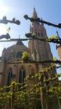 Καθεδρικός ναός στη Μπρυζ στοκ φωτογραφία με δικαίωμα ελεύθερης χρήσης