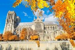 Καθεδρικός ναός της Νοτρ Νταμ, Παρίσι Γαλλία Στοκ Εικόνες