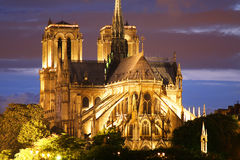 Καθεδρικός ναός της Νοτρ Νταμ στο Παρίσι Στοκ εικόνα με δικαίωμα ελεύθερης χρήσης