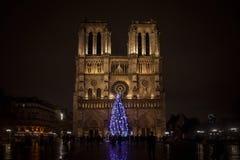 Καθεδρικός ναός της Παναγίας των Παρισίων τη νύχτα με το παραδοσιακό χριστουγεννιάτικο δέντρο στο μέτωπο στοκ φωτογραφία με δικαίωμα ελεύθερης χρήσης