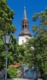 καθεδρικός ναός Mary s ST Ταλίν Στοκ Εικόνες