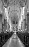 Καθεδρικός ναός Αγίου Πάτρικ ` s στην πόλη της Νέας Υόρκης Στοκ φωτογραφίες με δικαίωμα ελεύθερης χρήσης