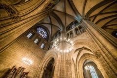 καθεδρικός ναός Γενεύη Στοκ Εικόνες