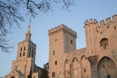 Καθεδρικός ναός και Palais des Papes Palace  Αβινιόν Στοκ Φωτογραφία