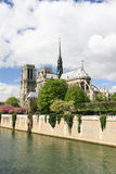 Καθεδρικός ναός κυρίας Notre στοκ εικόνες με δικαίωμα ελεύθερης χρήσης