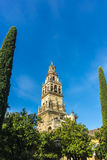 Καθεδρικός ναός μουσουλμανικών τεμενών της Κόρδοβα στην Ανδαλουσία, Ισπανία Στοκ Εικόνα