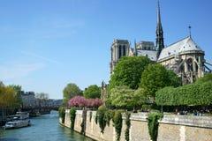 Καθεδρικός ναός της Notre Dame την άνοιξη Στοκ Φωτογραφίες