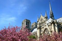 Καθεδρικός ναός της Notre-Dame την άνοιξη Στοκ φωτογραφίες με δικαίωμα ελεύθερης χρήσης